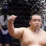 人気復活!いま相撲が熱い!