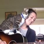 「ご主人!かまって!」演奏しているご主人を全力で邪魔する猫が可愛すぎる