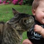 「ネコだって忙しいんだニャー!」おせっかいネコの1日
