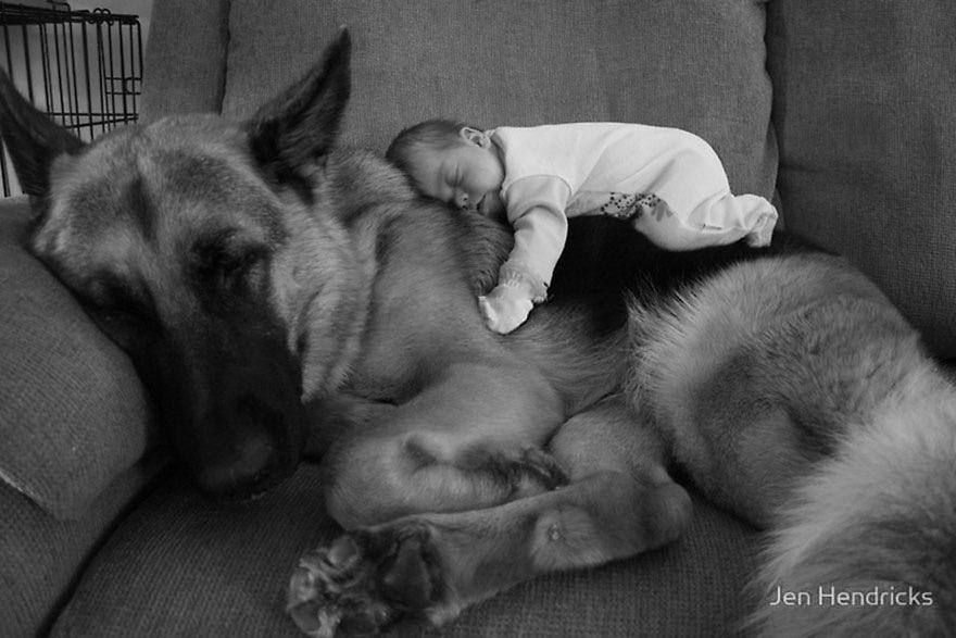 dogchild21