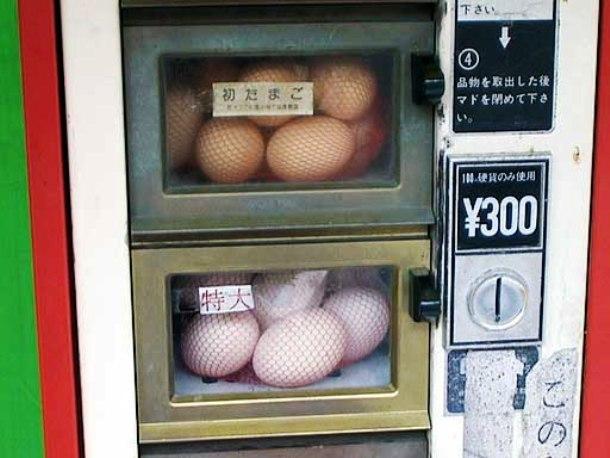 www.weirdasianews.com-eggvending