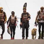 過酷なレース中に起こった1匹の野良犬との出会いに世界が感動