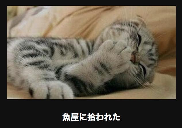 スクリーンショット 2015-02-06 14.15.10