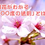 誰でもサクラの開花予想ができる「600度の法則」とは?