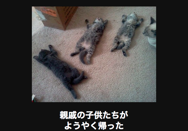 15481 ネコ
