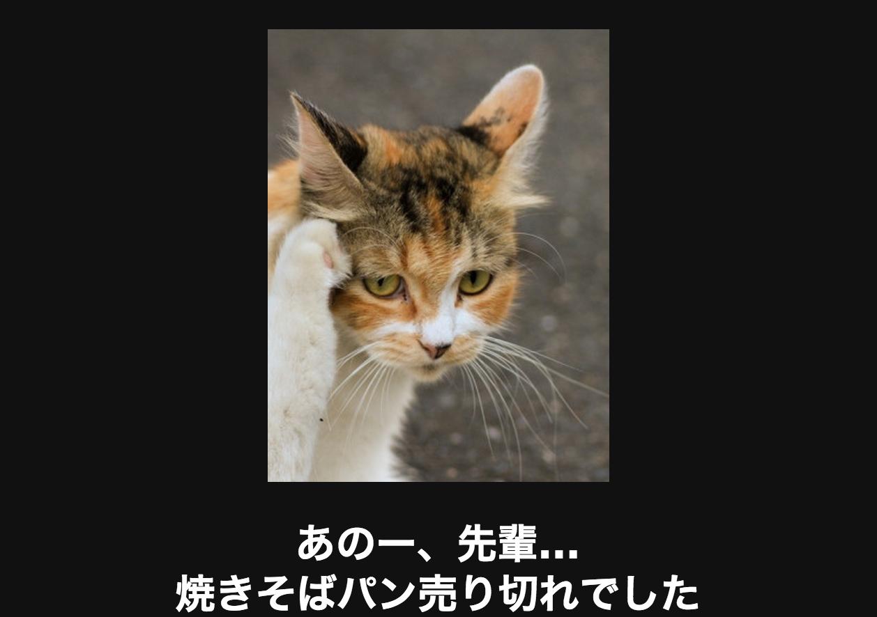 スクリーンショット 2015-06-06 20.27.57