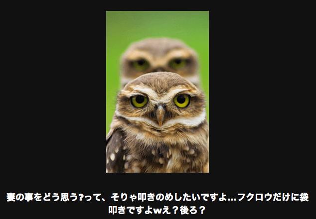 スクリーンショット 2015-06-13 20.51.22