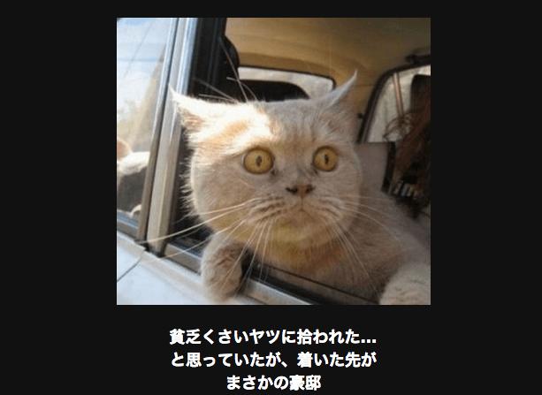 スクリーンショット 2015-06-28 12.51.23