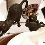 ベローチェで貰える「ふちねこ」が大人気!今のうちに数量限定の黒猫をゲットしちゃおう!