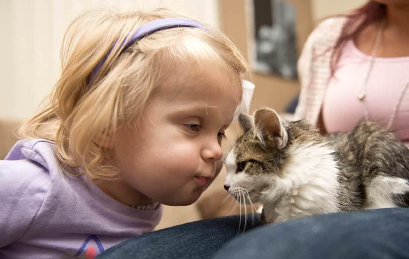 少女 猫 片腕3