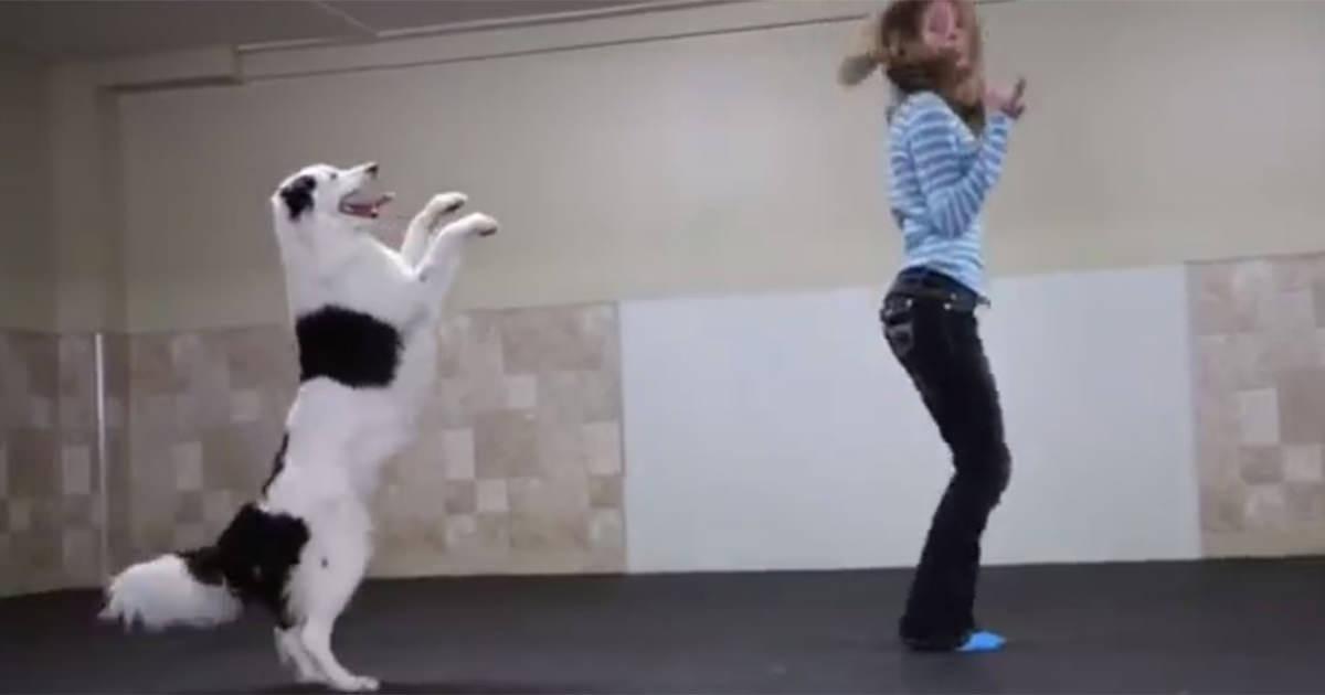 犬 ダンス1 (1)