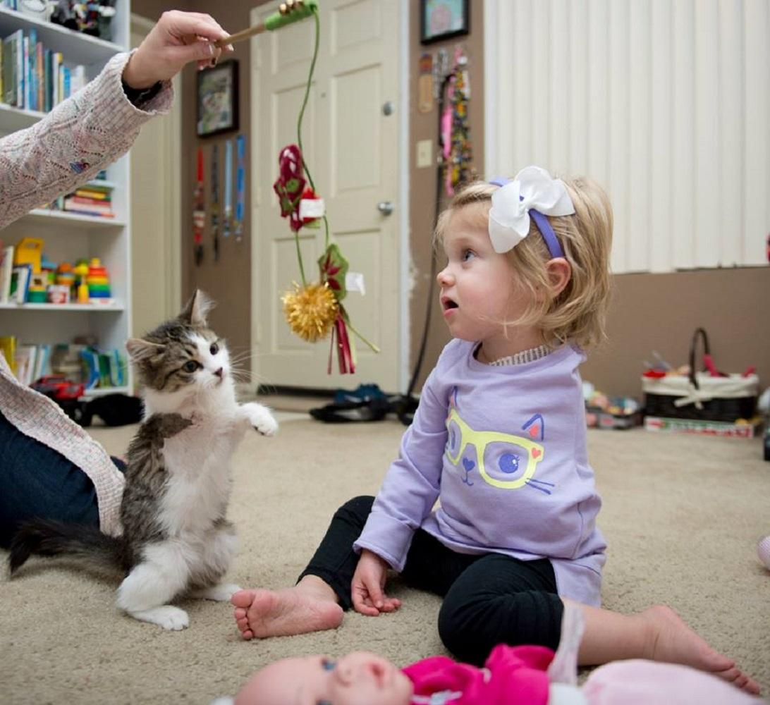 少女 猫 片腕4