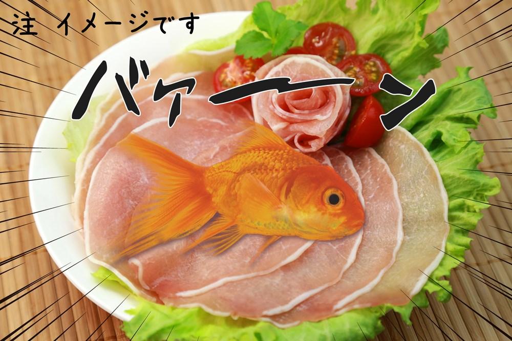 生ハム金魚02_R