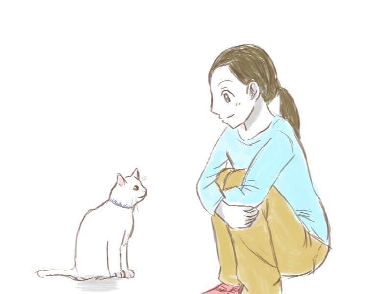 猫好かれる3