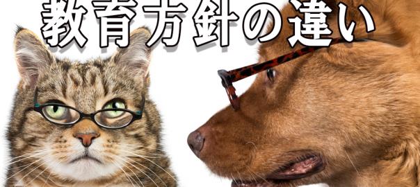 階段の降り方を教える犬と猫、それぞれの教育方針が違い過ぎると話題に