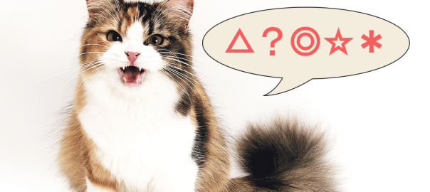 【説教する猫】猫が怒ってなんか喋ってるんだけど、全然わからない