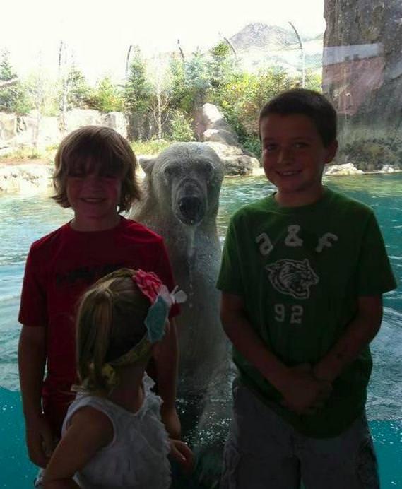 子供達とシロクマの写真