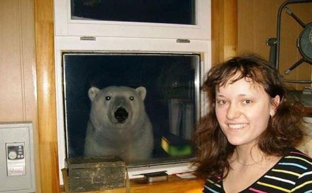 女性とシロクマの写真