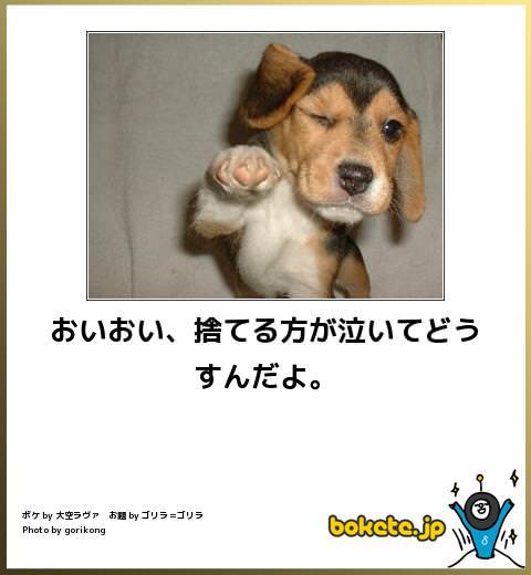 イヌの画像でボケてみた