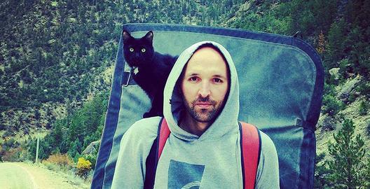 どんな山も登る猫界のアルピニストがポテンシャル高すぎ