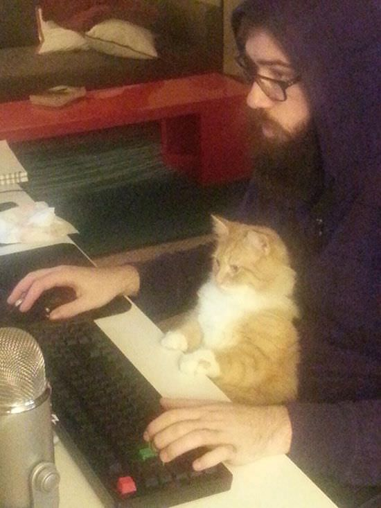 人間のような猫