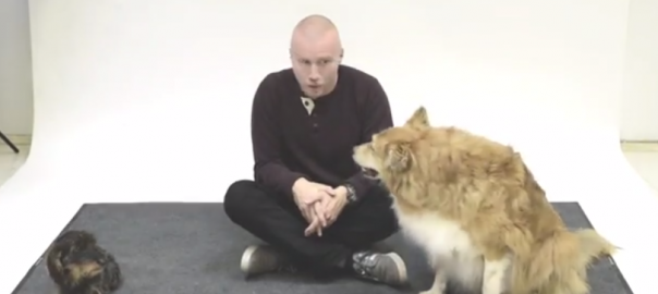 【面白実験】人が「犬語」を話したときの犬たちの反応を調べてみた