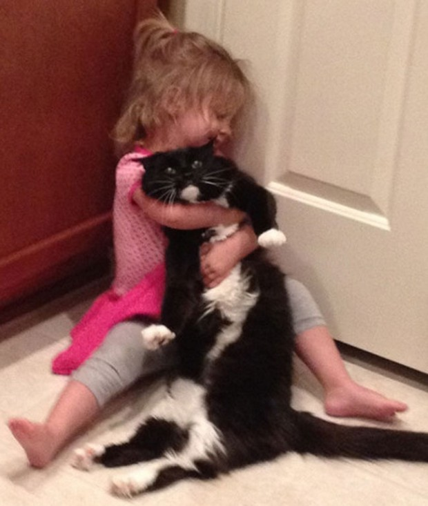 agonizing-struggles-that-prove-cat-owners-are-the-best-people-ever-8-620x-620x