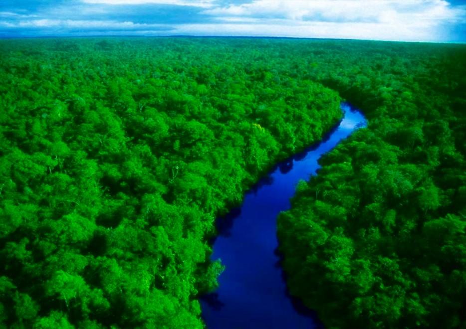 amazon river 2