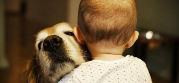 思わずほっこり。人間を優しくハグする犬たち23選