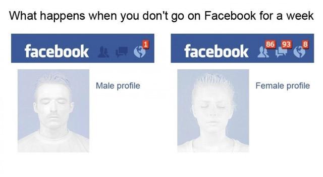 男女の違い、facebook