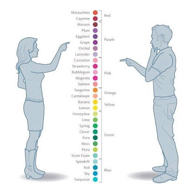 男女の違い、色彩