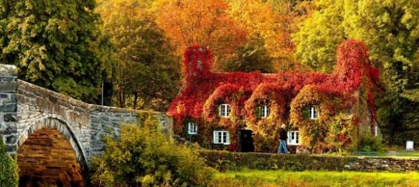 【秋の彩り】見ているだけで癒される世界の美しい紅葉16選