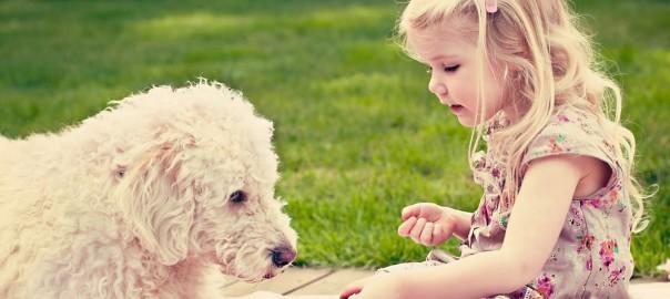 子供を動物と一緒に育てる15のメリット