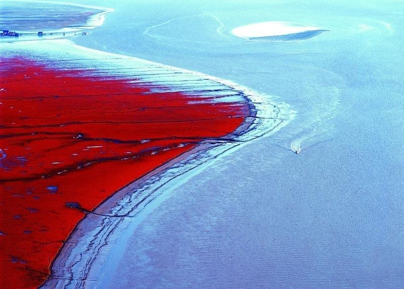 赤い砂浜(中国)