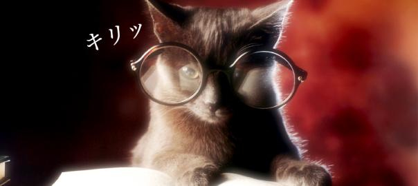 なぜ読書中の猫はインテリ風に見えるのか