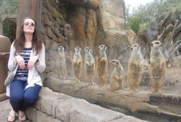 動物園での出来事20