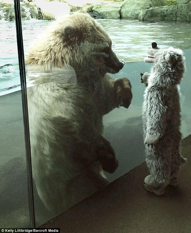 動物園での出来事11