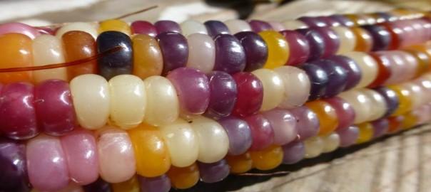 【食べられる宝石】カラフルすぎるグラス・ジェム・コーンとは?