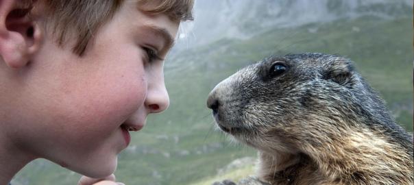 かわいい者どうしの友情!野生の動物と仲良くなった10歳の少年