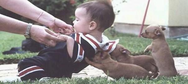 世界は優しさで満ちている!協力し合い困難を乗り切る生き物たち
