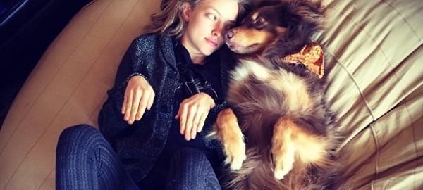 あなたが人間より犬を愛しているとわかる10の特徴