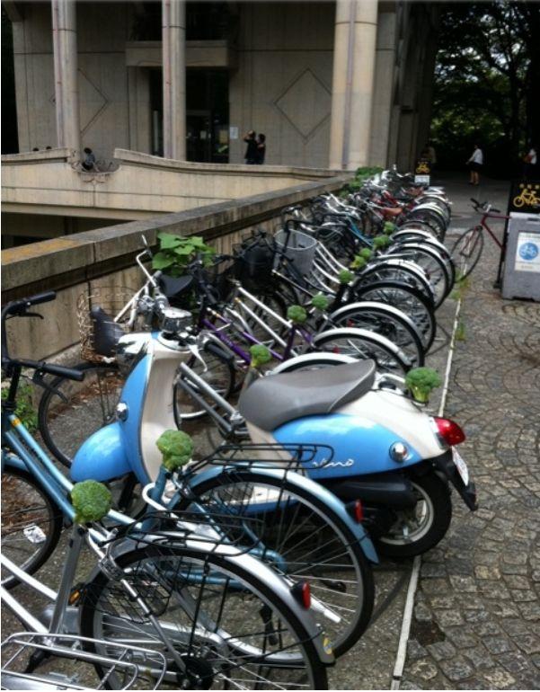 東大、自転車サドルがブロッコリー事件