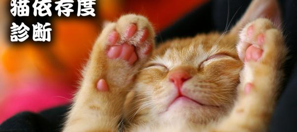 【ネコ大好き人間必見!】ネコ依存度診断