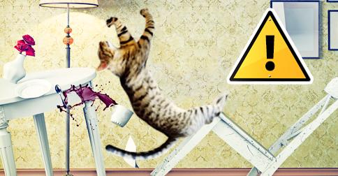 【アニマルパニック】動物界で起こった珍ハプニング16選