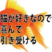q_11_3