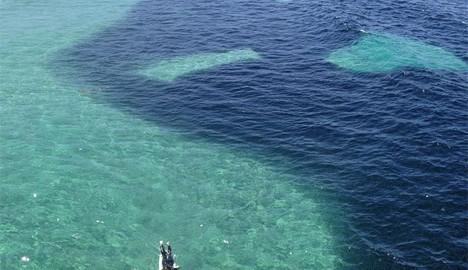 どす黒い物体が海に。重油流出かと思いきやその正体は...