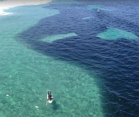 Oil-Spill-California-Fish-1