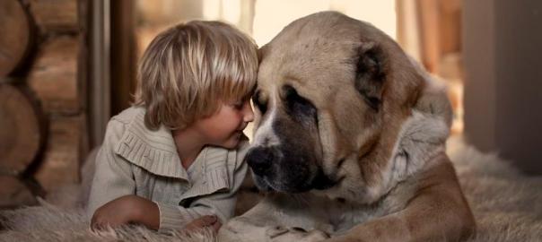 大人になっても忘れない!愛犬と過ごした幼少期の懐かしい思い出