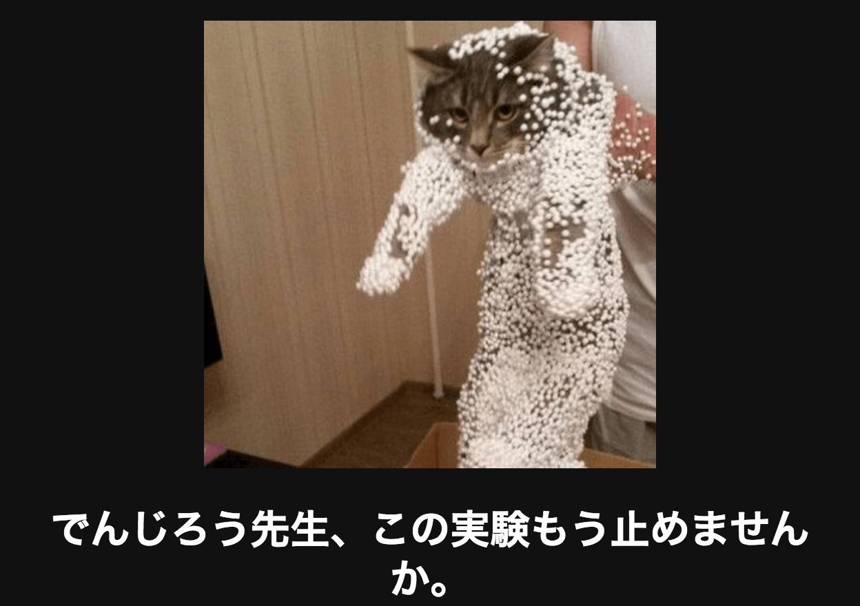 静電気で発泡スチロールがくっついた猫 アメーバ大喜利