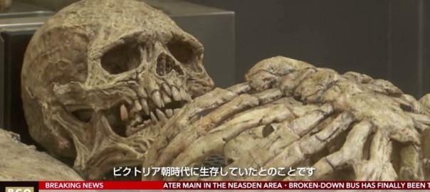身長2メートル超える新種の人類の骨を発見?!現地ロンドンは騒然